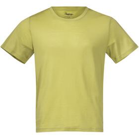 Bergans Oslo Wool Camiseta Hombre, verde